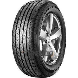 Goodyear Eagle Sport All-Season ( 255/45 R19 104H XL AO, SCT )
